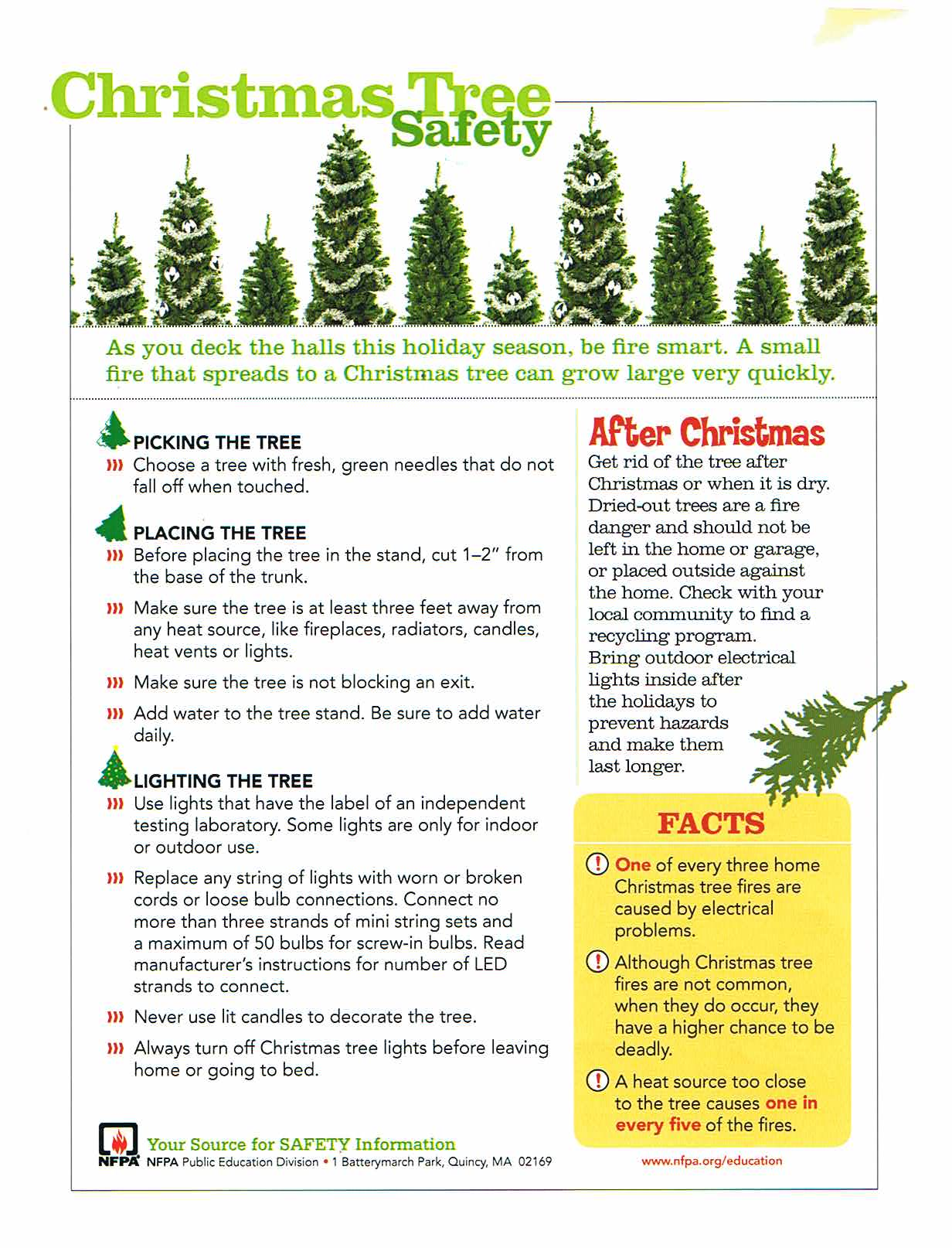 Christmas Tree Safety - Borough of Sayreville